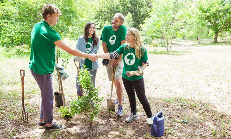 Can Volunteering Improve Your Employee's Performance?